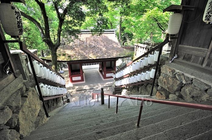 岡山県 北隋神門へ降りる石段