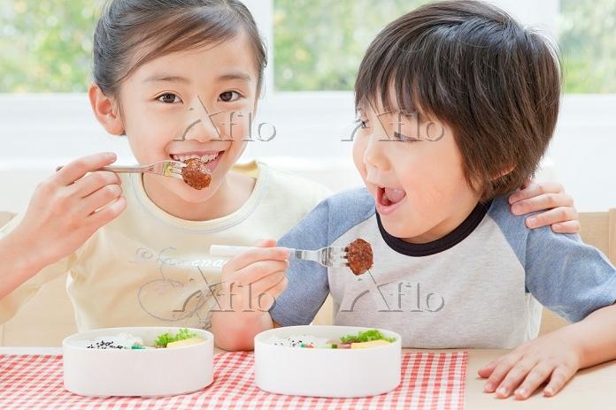 弁当を食べる兄弟