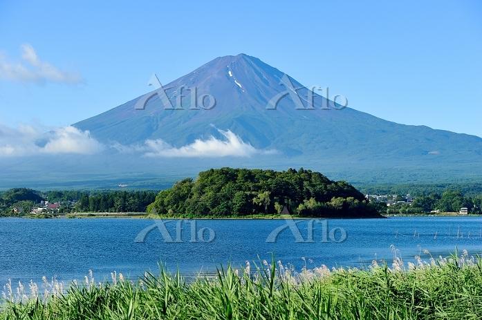 河口湖から見た夏の富士山