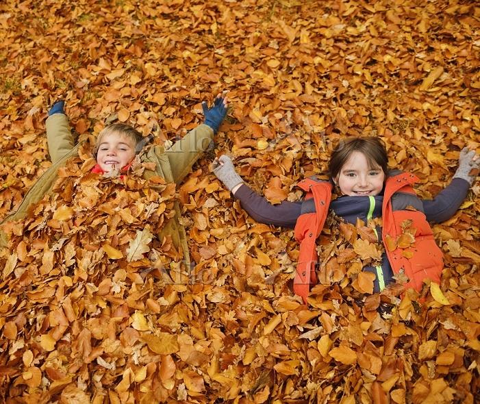 Children laying in autumn leav・・・