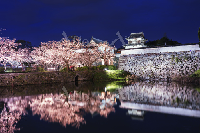 福岡県 福岡城跡 下之橋御門と潮見櫓