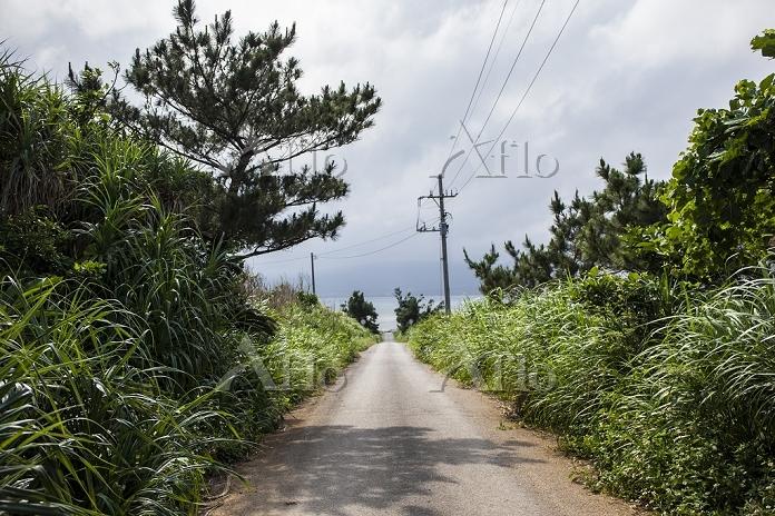 小浜島 小浜島の風景