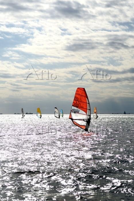 千葉県 ウインドサーフィン