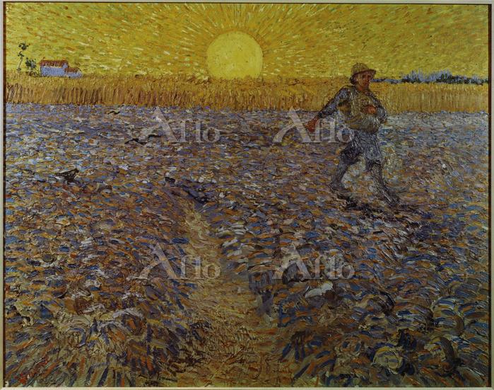 ゴッホ 「夕陽と種播く人」