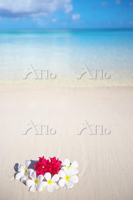 グアム タモンビーチとプルメリア