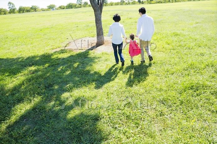 公園を手を繋いで歩く日本人三人家族の後ろ姿