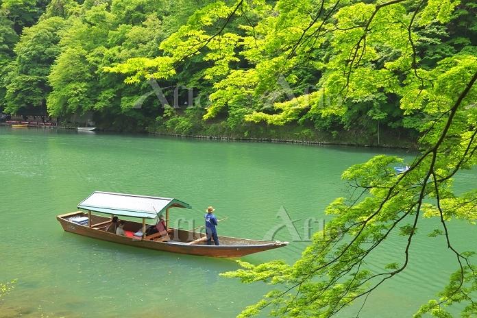日本 京都府 保津峡 新緑の嵐山と屋形船