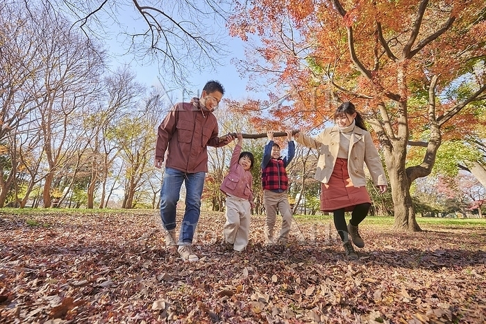 秋の公園を散歩する日本人家族