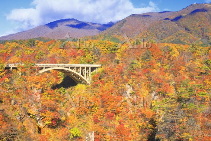 宮城県 秋の鳴子峡