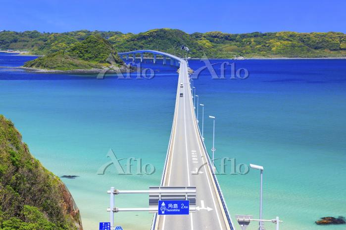 山口県 角島大橋と海士ヶ瀬