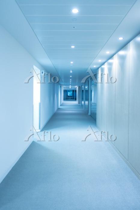 Empty Corridor In Modern Build・・・