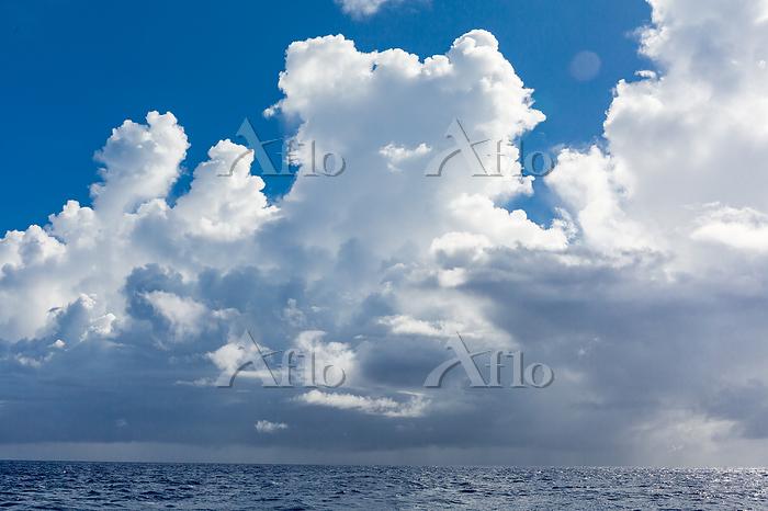 小笠原 海上の入道雲