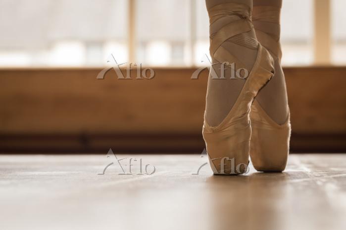 Low section of ballerina danci・・・