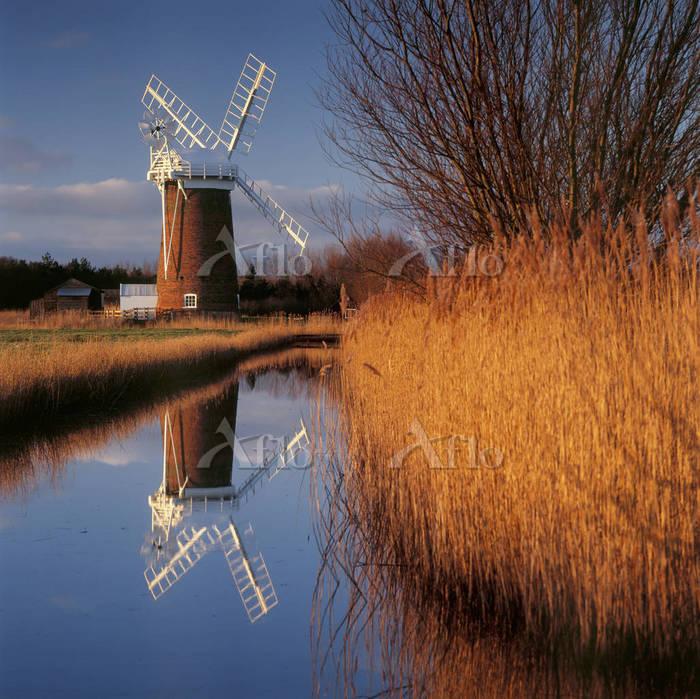 Horsey windmill standing proud・・・