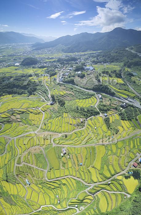 長野県 千曲市 田毎の月 おばすて棚田と冠着山