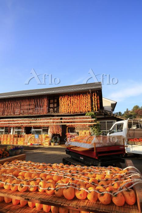 山梨県 岩波農園のころ柿の天日干し
