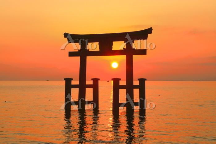 日本 滋賀県 朝日の白髭神社
