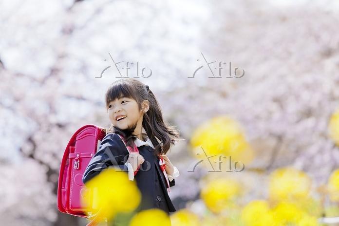 桜と菜の花の咲く公園で笑うランドセル姿の新一年生