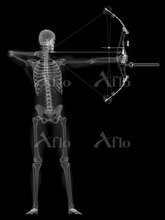 Archer, computer artwork.