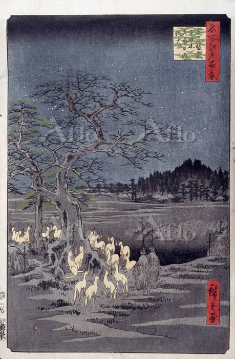 歌川広重 「名所江戸百景  王子装束ゑの木大晦日の狐火」