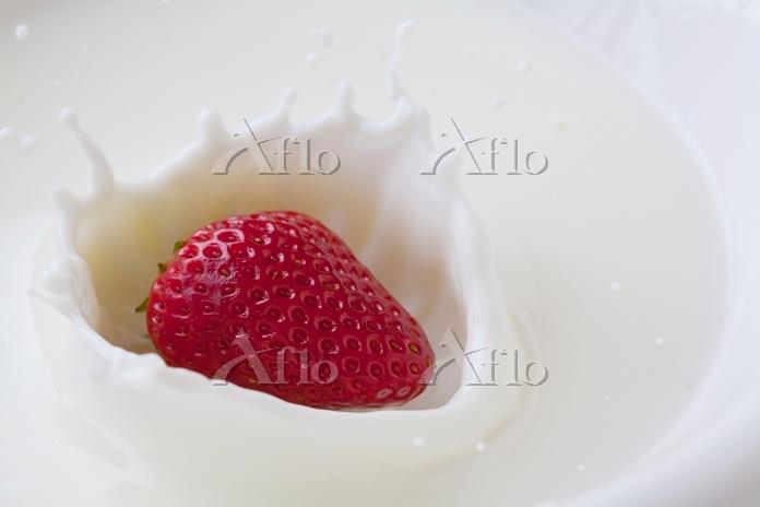 ミルククラウンの中のイチゴ