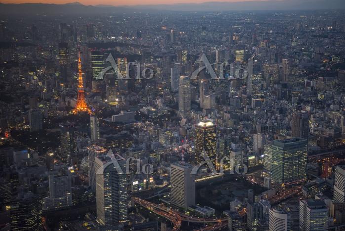 東京都 東京タワーライトアップとビル群