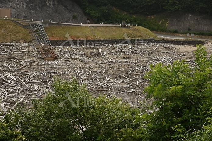 矢木沢ダム 2016年7月渇水(貯水量30%)