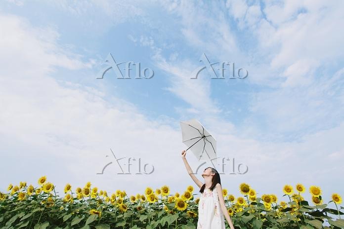 ヒマワリ畑と日本人女性