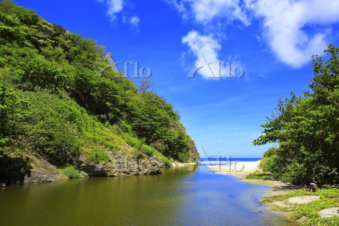 東京都 小笠原諸島 父島 中山峠への道から望む八ッ瀬川と小港・・・