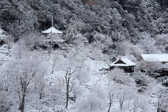 奈良県 吉野山 如意輪寺