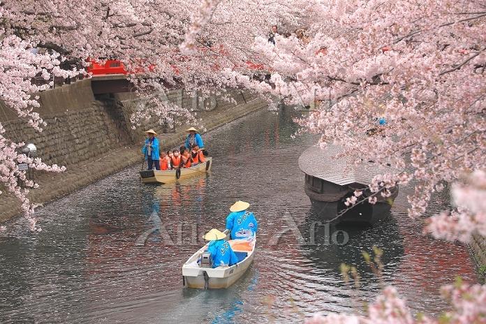 岐阜県 水の都おおがき舟下り 水門川