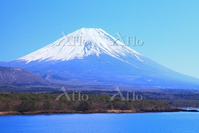 山梨県 本栖湖から冠雪の富士山