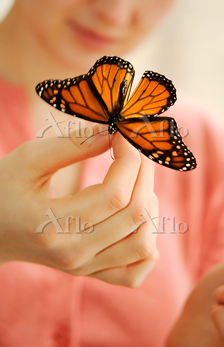 Girl looking at a butterfly in・・・