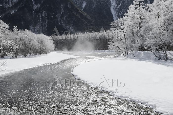 長野県 霧氷つく上高地梓川とカラマツ林