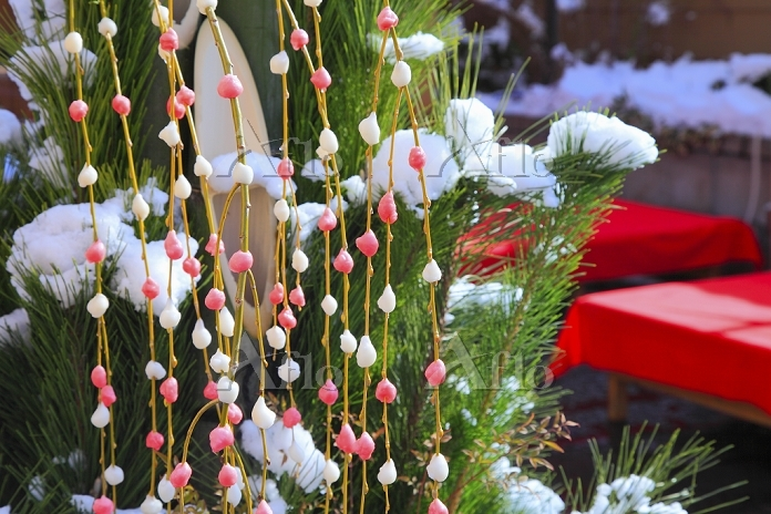 京都府 正月の餅花飾りと門松